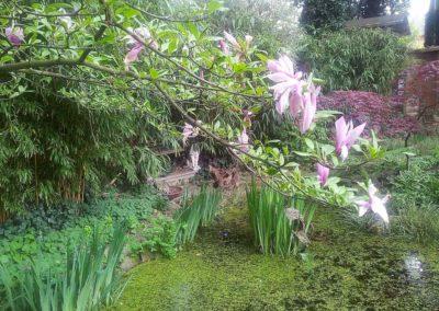 Gartenlandschaft mit Teich