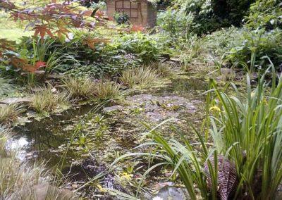 Gartenlandschaft